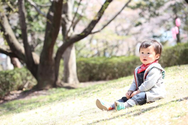 ロケーションフォト 桜