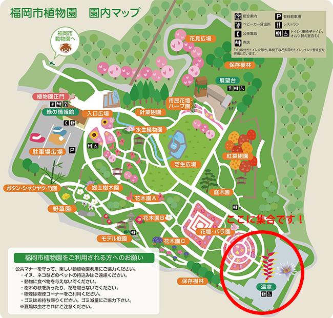 福岡市植物園の集合場所